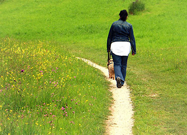 Person walking on a dirt path
