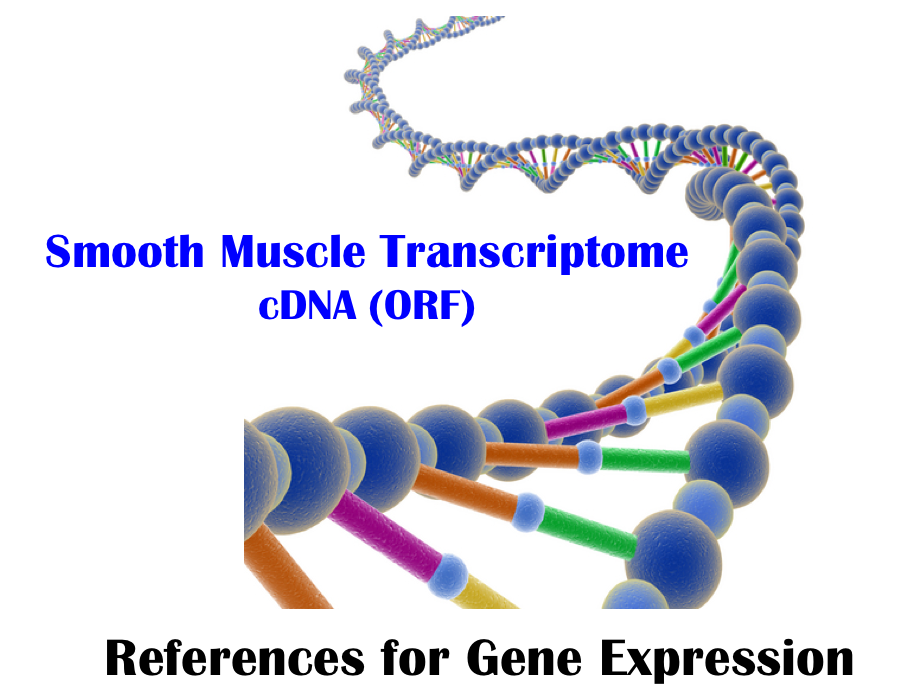 Smooth Muscle Transcriptome Browser