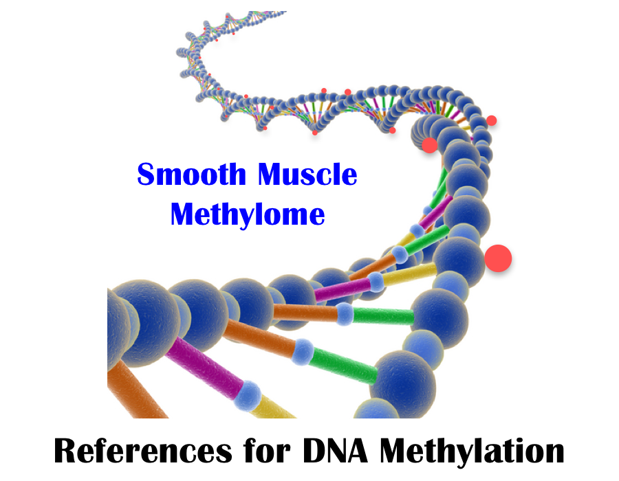 UCSC Smooth Muscle Methylome Browser