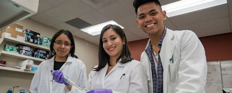 Nevada State College students in the University of Nevada, Reno School of Medicine Nevada IDeA Network of Biomedical Research Excellence (INBRE) lab.