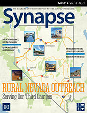 Cover for Synapse Fall 2013