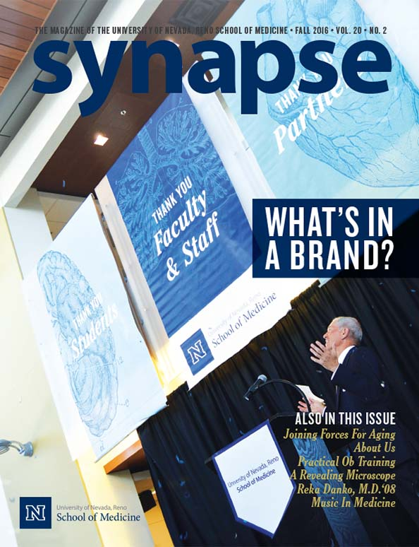 Cover for Synapse Fall 2016