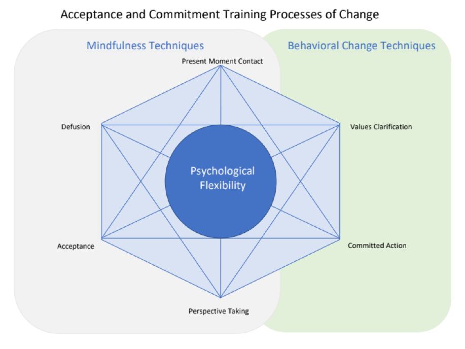 Mindfulness Techniques vs Gehavioral Change Techniques Hexagon Diagram. At the Center is Psychological Flexibility connected by a hexigon with the terms around it counterclockwise starting with Present moment contact then Valuse Clarification then commited action Perspective Taking Accepance Defusion.